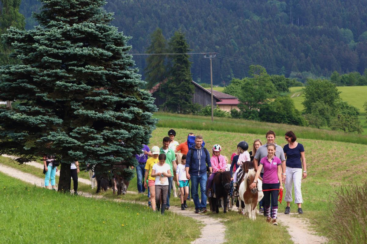 Kindgerechtes Reiten im Ponyclub