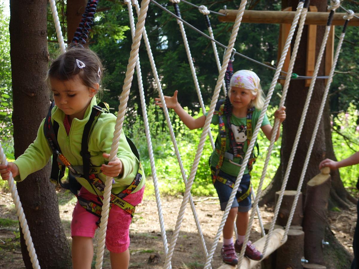 Klettern im Kletterwald